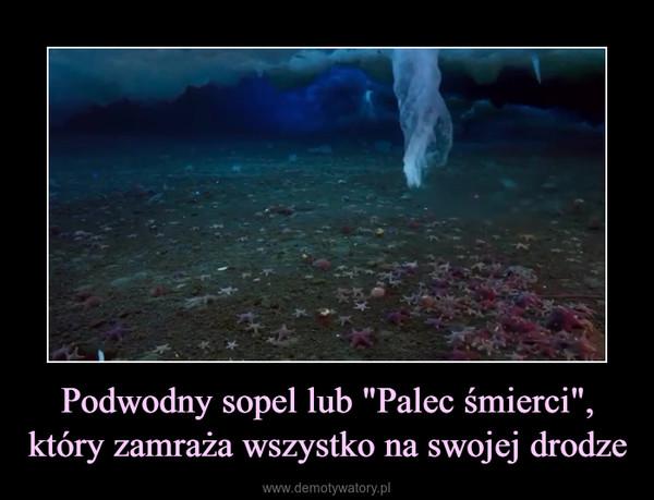 """Podwodny sopel lub """"Palec śmierci"""", który zamraża wszystko na swojej drodze –"""
