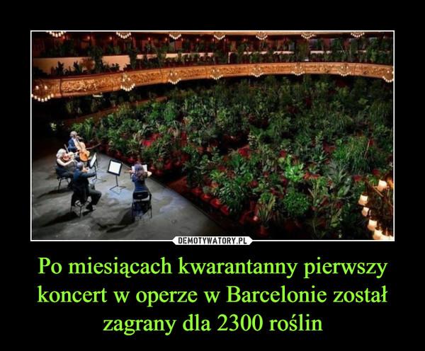 Po miesiącach kwarantanny pierwszy koncert w operze w Barcelonie został zagrany dla 2300 roślin –
