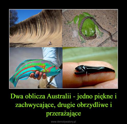 Dwa oblicza Australii - jedno piękne i zachwycające, drugie obrzydliwe i przerażające