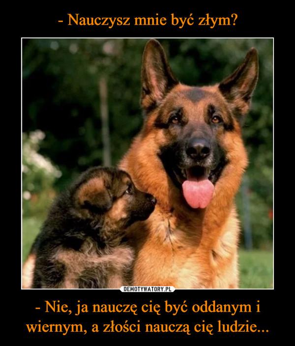 - Nie, ja nauczę cię być oddanym i wiernym, a złości nauczą cię ludzie... –
