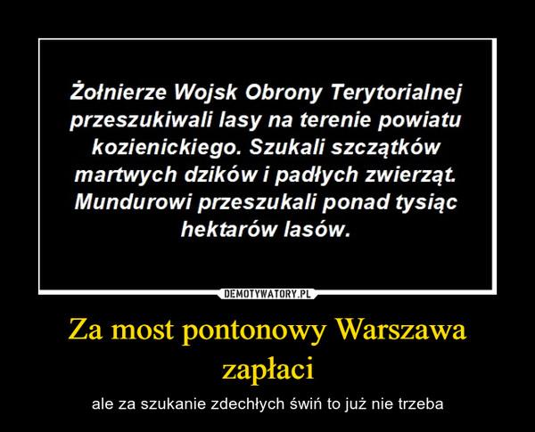 Za most pontonowy Warszawa zapłaci – ale za szukanie zdechłych świń to już nie trzeba