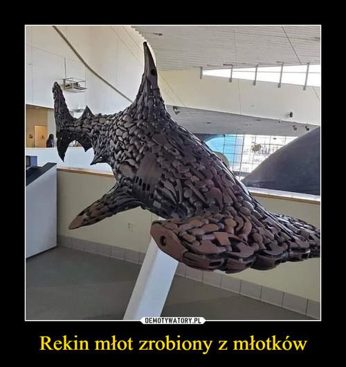 Rekin młot zrobiony z młotków