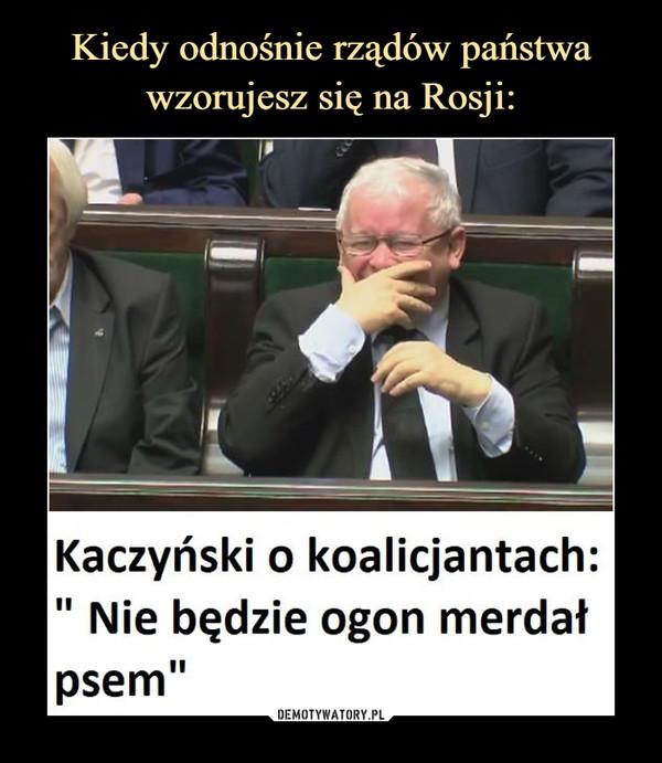 """–  Kaczyński o koalicjantach:"""" Nie będzie ogon merdałpsem"""""""