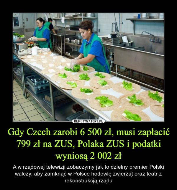 Gdy Czech zarobi 6 500 zł, musi zapłacić 799 zł na ZUS, Polaka ZUS i podatki wyniosą 2 002 zł – A w rządowej telewizji zobaczymy jak to dzielny premier Polski walczy, aby zamknąć w Polsce hodowlę zwierząt oraz teatr z rekonstrukcją rządu