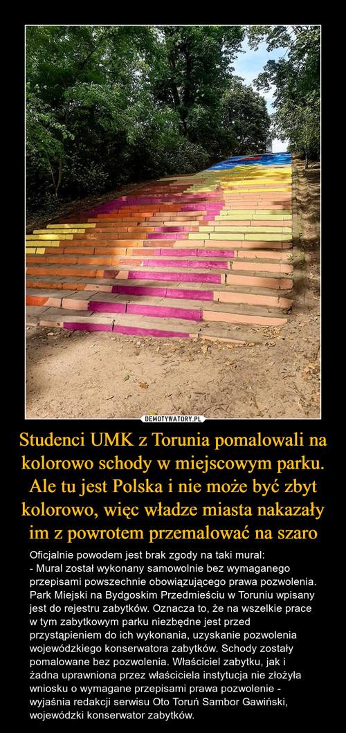 Studenci UMK z Torunia pomalowali na kolorowo schody w miejscowym parku. Ale tu jest Polska i nie może być zbyt kolorowo, więc władze miasta nakazały im z powrotem przemalować na szaro