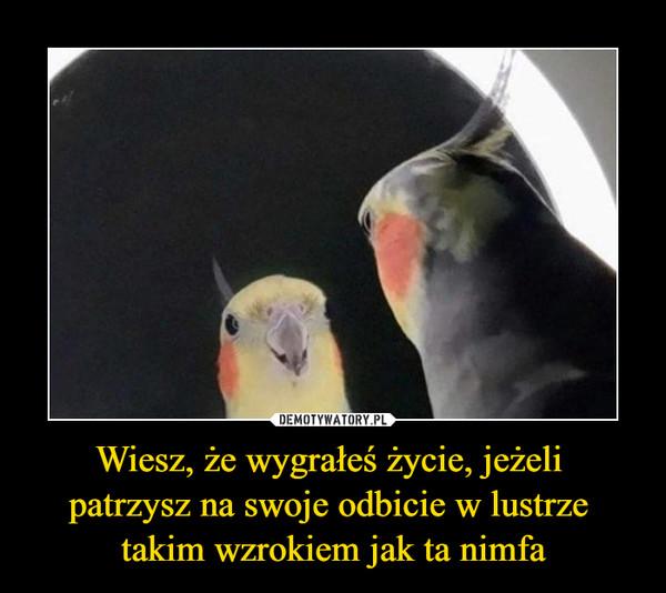 Wiesz, że wygrałeś życie, jeżeli patrzysz na swoje odbicie w lustrze takim wzrokiem jak ta nimfa –
