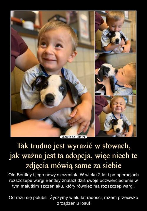 Tak trudno jest wyrazić w słowach, jak ważna jest ta adopcja, więc niech te zdjęcia mówią same za siebie