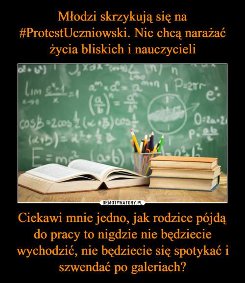 Młodzi skrzykują się na #ProtestUczniowski. Nie chcą narażać życia bliskich i nauczycieli Ciekawi mnie jedno, jak rodzice pójdą do pracy to nigdzie nie będziecie wychodzić, nie będziecie się spotykać i szwendać po galeriach?