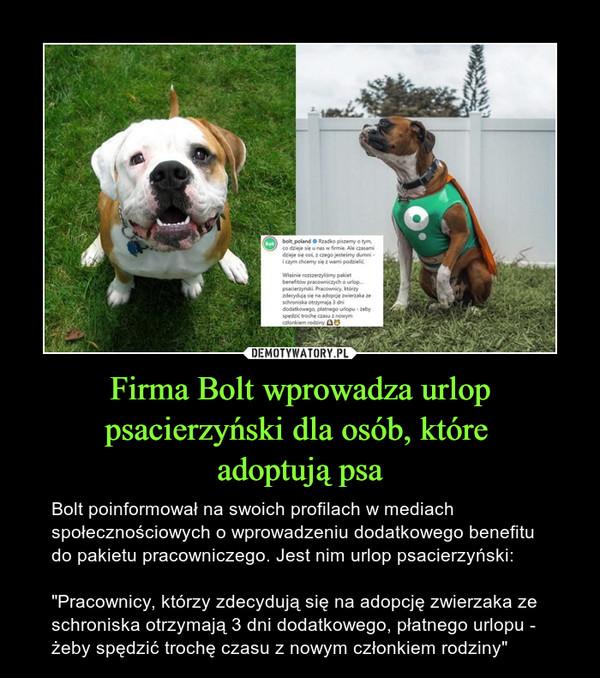 """Firma Bolt wprowadza urlop psacierzyński dla osób, które adoptują psa – Bolt poinformował na swoich profilach w mediach społecznościowych o wprowadzeniu dodatkowego benefitu do pakietu pracowniczego. Jest nim urlop psacierzyński:""""Pracownicy, którzy zdecydują się na adopcję zwierzaka ze schroniska otrzymają 3 dni dodatkowego, płatnego urlopu - żeby spędzić trochę czasu z nowym członkiem rodziny"""""""
