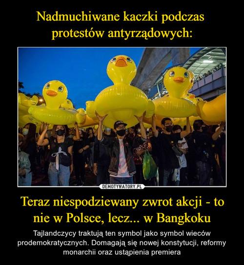 Nadmuchiwane kaczki podczas  protestów antyrządowych: Teraz niespodziewany zwrot akcji - to nie w Polsce, lecz... w Bangkoku