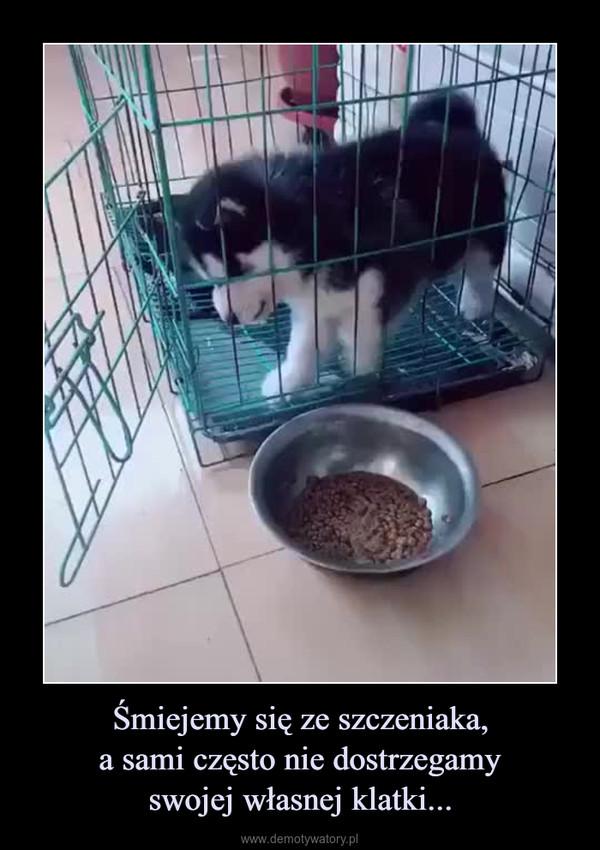 Śmiejemy się ze szczeniaka,a sami często nie dostrzegamyswojej własnej klatki... –