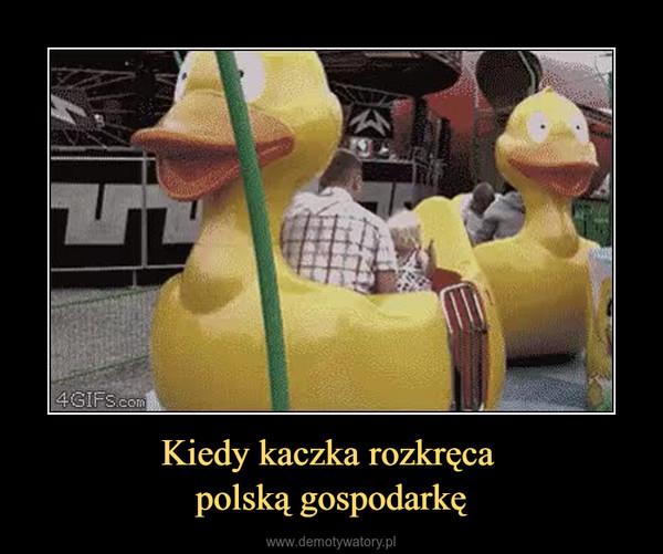 Kiedy kaczka rozkręca polską gospodarkę –