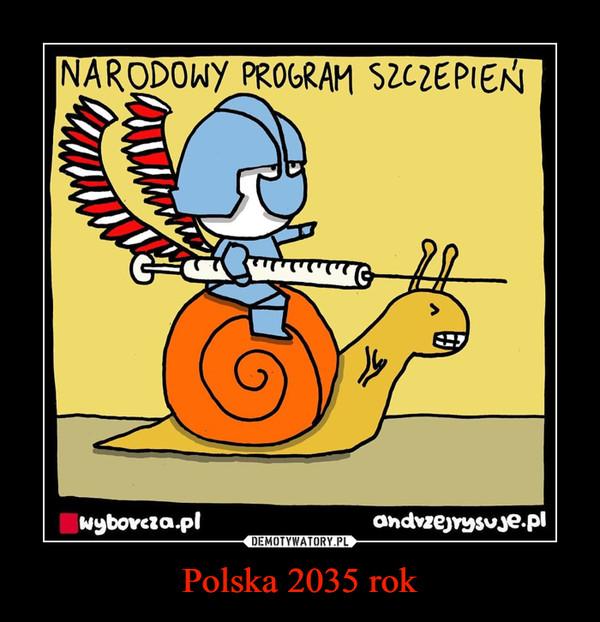Polska 2035 rok –