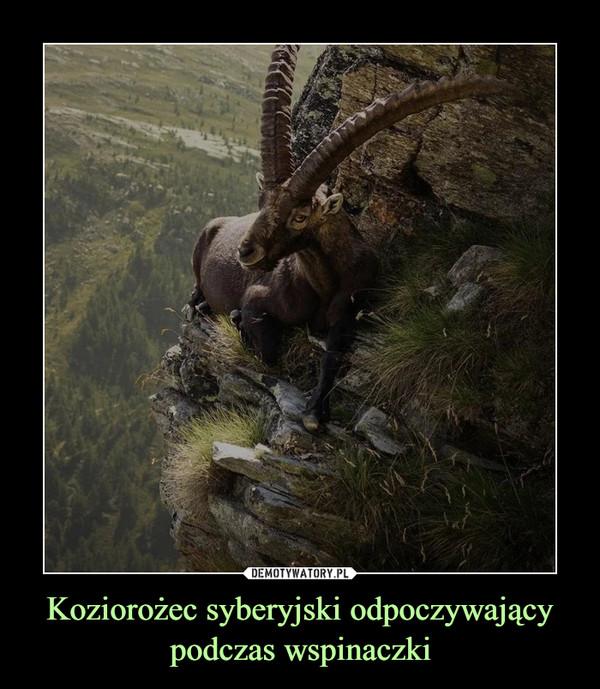 [Obrazek: 1610609897_d1keux_600.jpg]