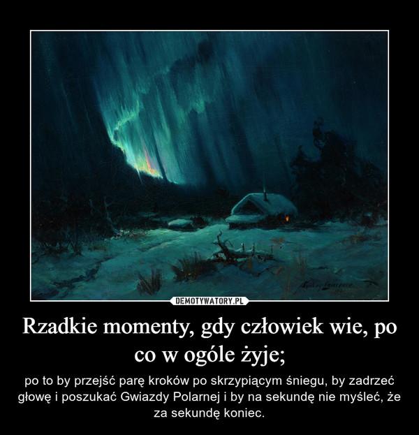 Rzadkie momenty, gdy człowiek wie, po co w ogóle żyje; – po to by przejść parę kroków po skrzypiącym śniegu, by zadrzeć głowę i poszukać Gwiazdy Polarnej i by na sekundę nie myśleć, że za sekundę koniec.