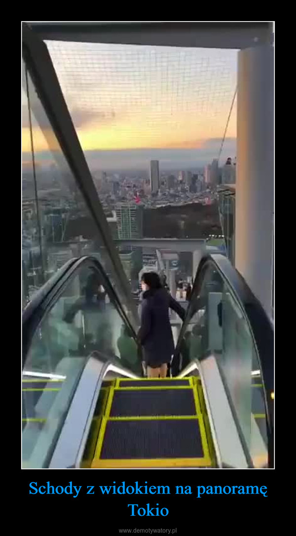 Schody z widokiem na panoramę Tokio –