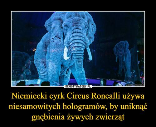 Niemiecki cyrk Circus Roncalli używa niesamowitych hologramów, by uniknąć gnębienia żywych zwierząt