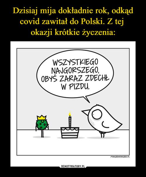 Dzisiaj mija dokładnie rok, odkąd covid zawitał do Polski. Z tej  okazji krótkie życzenia: