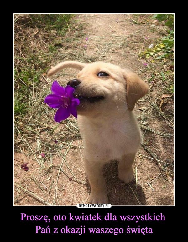 Proszę, oto kwiatek dla wszystkich Pań z okazji waszego święta –