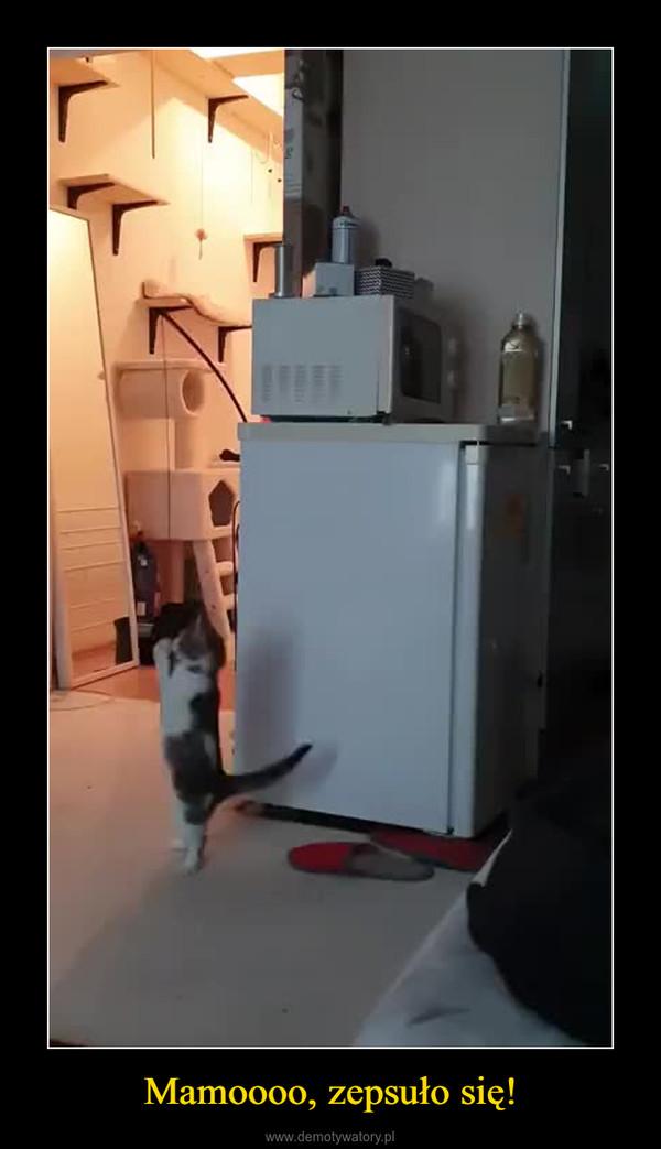 Mamoooo, zepsuło się! –