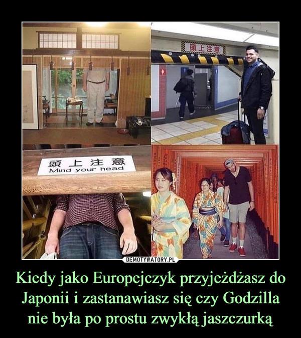 Kiedy jako Europejczyk przyjeżdżasz do Japonii i zastanawiasz się czy Godzilla nie była po prostu zwykłą jaszczurką –