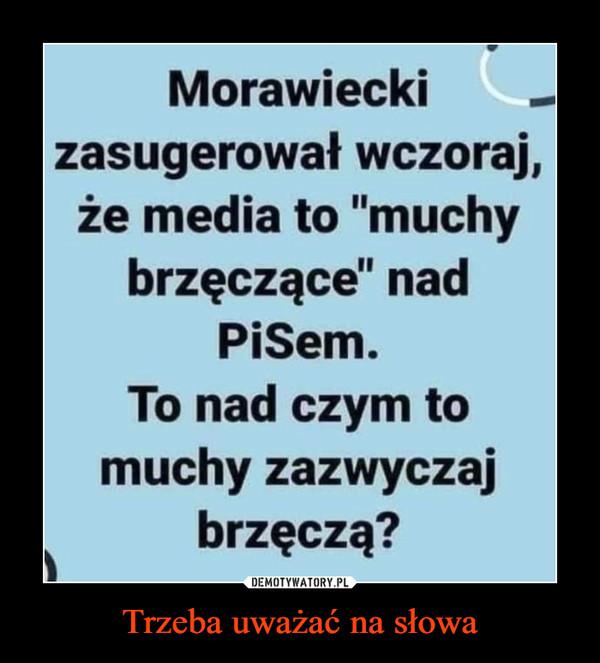 """Trzeba uważać na słowa –  Morawieckizasugerował wczoraj,że media to """"muchybrzęczące"""" nadPiSem.To nad czym tomuchy zazwyczajbrzęczą?"""