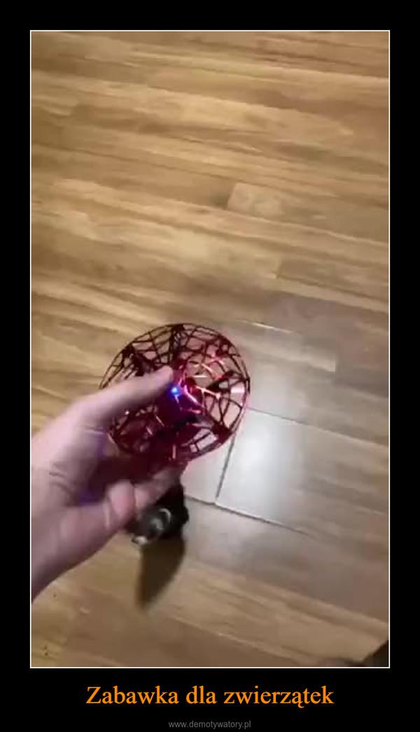 Zabawka dla zwierzątek –
