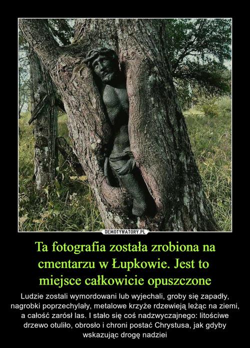 Ta fotografia została zrobiona na cmentarzu w Łupkowie. Jest to  miejsce całkowicie opuszczone