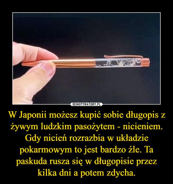 W Japonii możesz kupić sobie długopis z żywym ludzkim pasożytem - nicieniem. Gdy nicień rozrazbia w układzie pokarmowym to jest bardzo źle. Ta paskuda rusza się w długopisie przez kilka dni a potem zdycha. –