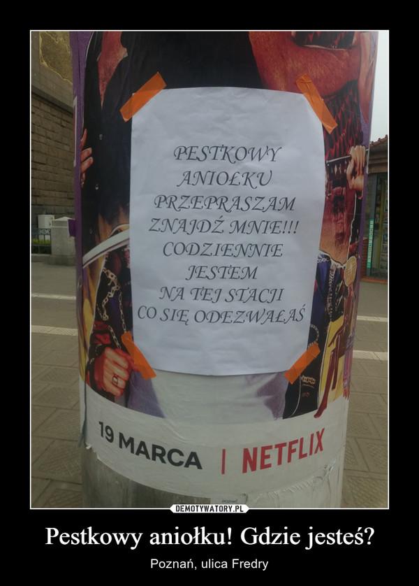 Pestkowy aniołku! Gdzie jesteś? – Poznań, ulica Fredry