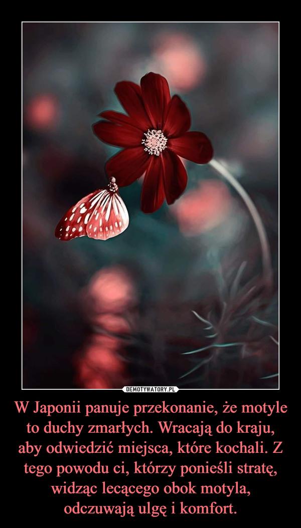 W Japonii panuje przekonanie, że motyle to duchy zmarłych. Wracają do kraju, aby odwiedzić miejsca, które kochali. Z tego powodu ci, którzy ponieśli stratę, widząc lecącego obok motyla, odczuwają ulgę i komfort. –