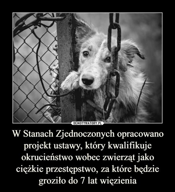 W Stanach Zjednoczonych opracowano projekt ustawy, który kwalifikuje okrucieństwo wobec zwierząt jako ciężkie przestępstwo, za które będzie groziło do 7 lat więzienia –