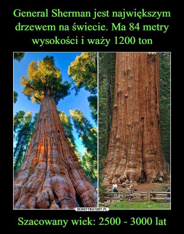 Szacowany wiek: 2500 - 3000 lat –