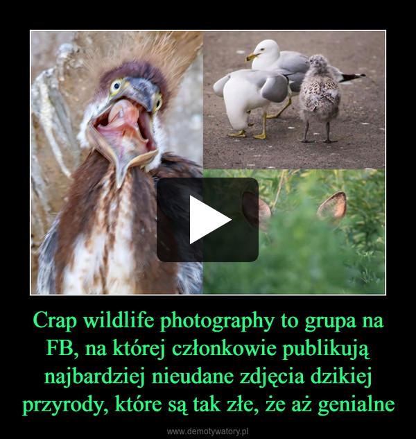 Crap wildlife photography to grupa na FB, na której członkowie publikują najbardziej nieudane zdjęcia dzikiej przyrody, które są tak złe, że aż genialne –