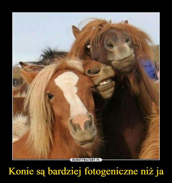 Konie są bardziej fotogeniczne niż ja