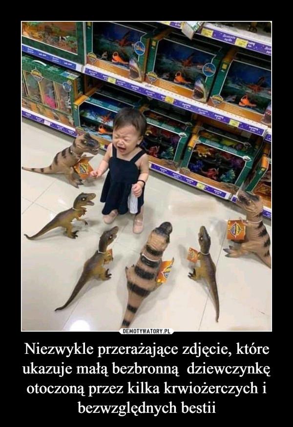 Niezwykle przerażające zdjęcie, które ukazuje małą bezbronną  dziewczynkę otoczoną przez kilka krwiożerczych i bezwzględnych bestii –