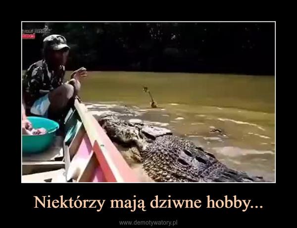 Niektórzy mają dziwne hobby... –