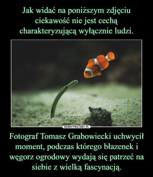 Jak widać na poniższym zdjęciu ciekawość nie jest cechą charakteryzującą wyłącznie ludzi. Fotograf Tomasz Grabowiecki uchwycił moment, podczas którego błazenek i węgorz ogrodowy wydają się patrzeć na siebie z wielką fascynacją.
