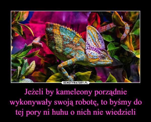 Jeżeli by kameleony porządnie wykonywały swoją robotę, to byśmy do tej pory ni huhu o nich nie wiedzieli –
