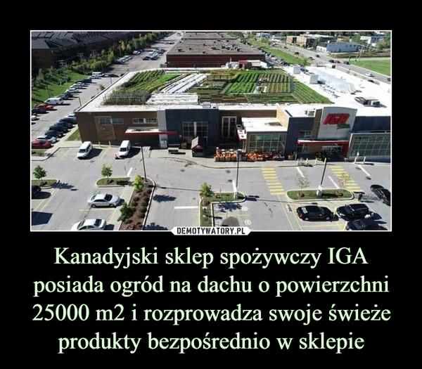 Kanadyjski sklep spożywczy IGA posiada ogród na dachu o powierzchni 25000 m2 i rozprowadza swoje świeże produkty bezpośrednio w sklepie –