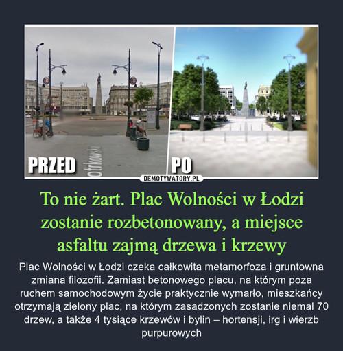 To nie żart. Plac Wolności w Łodzi zostanie rozbetonowany, a miejsce asfaltu zajmą drzewa i krzewy