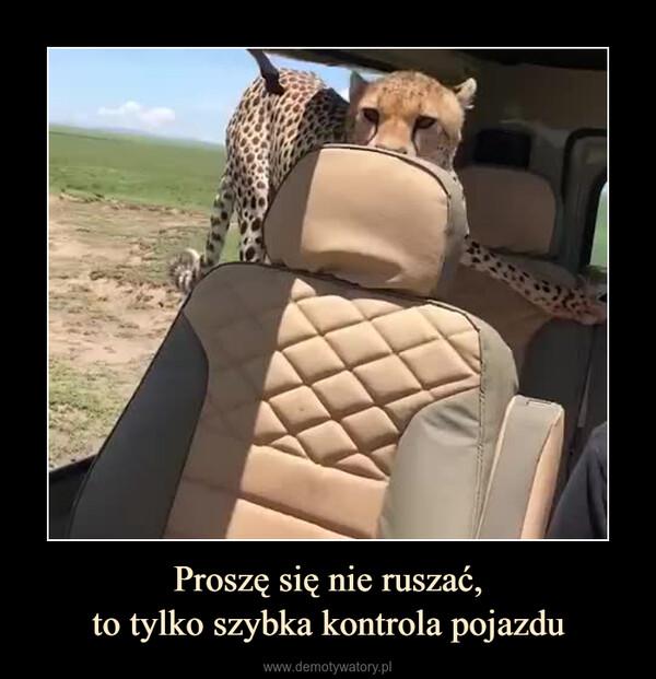 Proszę się nie ruszać,to tylko szybka kontrola pojazdu –