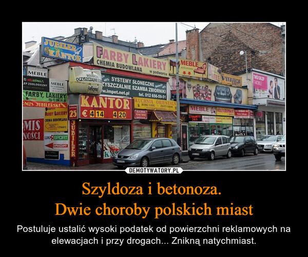 Szyldoza i betonoza. Dwie choroby polskich miast – Postuluje ustalić wysoki podatek od powierzchni reklamowych na elewacjach i przy drogach... Znikną natychmiast.