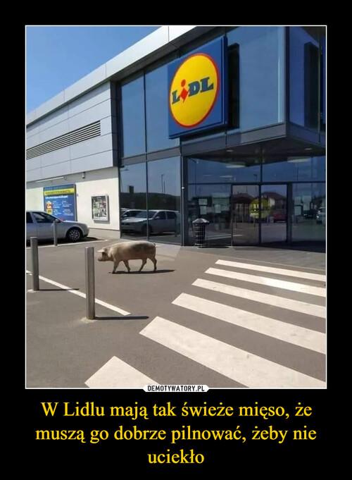 W Lidlu mają tak świeże mięso, że muszą go dobrze pilnować, żeby nie uciekło