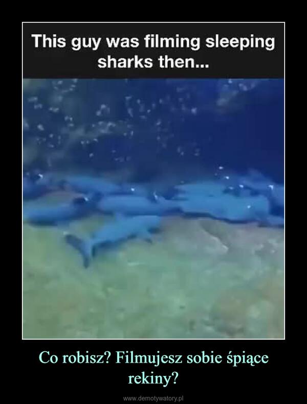 Co robisz? Filmujesz sobie śpiące rekiny? –